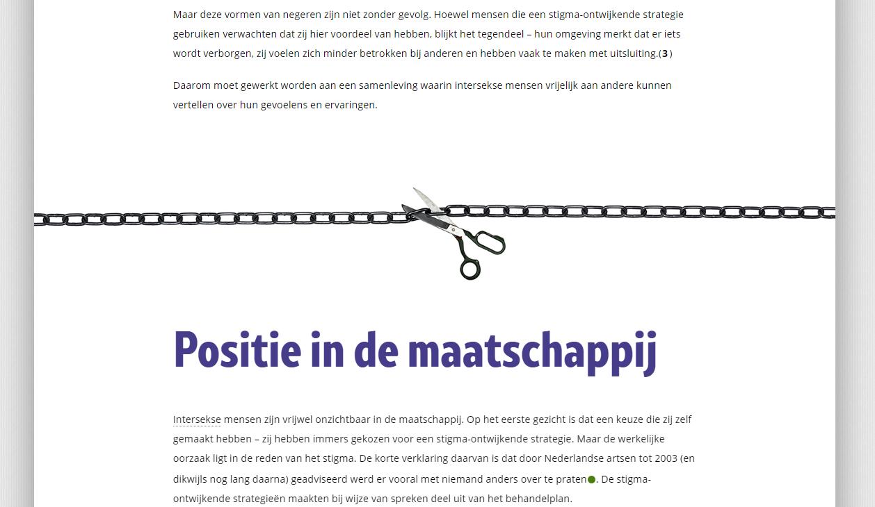 Voorbeeld van een 'divider' tussen twee 'hoofdstukken' van een pagina.